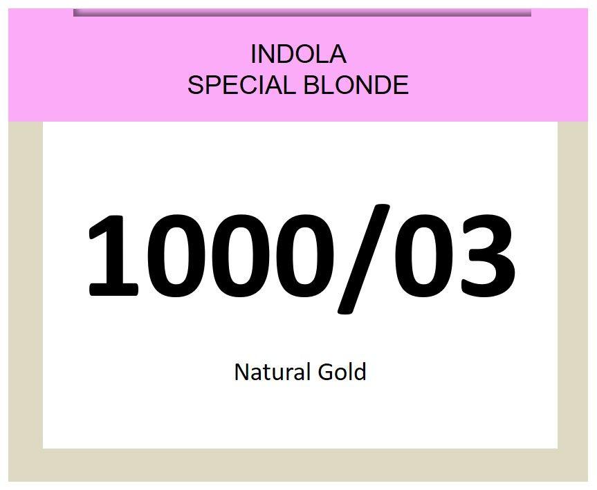 Blonde Expert Special Blonde 60ml 1000/03