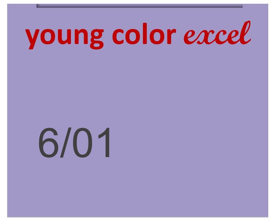 Young Color Excel 70ml 6/01