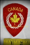 Canadian 25 Inf Bde badge