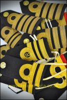 RN Shoulder Board (Various)