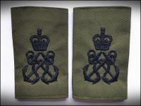 RN, Slide Petty Officer OG (Pair)