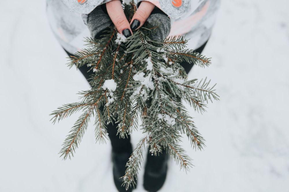 winter hands
