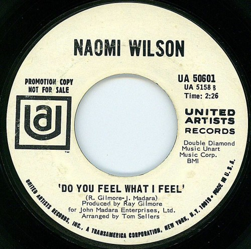 Naomi Wilson - Do You Feel What I Feel