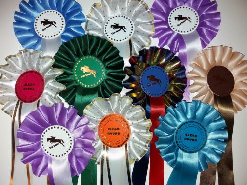 1 Tier Large Bargain Horse Related Clear Round (40)