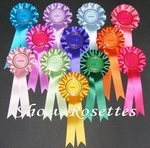 12 x Winner Rosettes 1 Tier