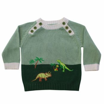 NEW 2017 - Dinosaur Jumper