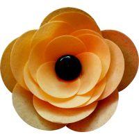 Ranunculus Flower Kit - Orange