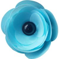 Ranunculus Flower Kit - Blue