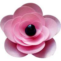 Ranunculus Flower Kit - Pink