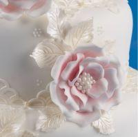 Patchwork Cutters Briar Rose Set