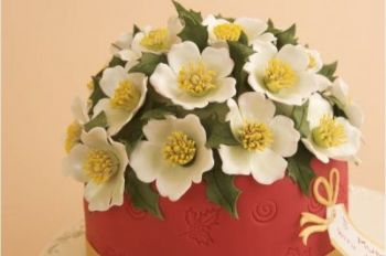 Patchwork Cutters Large Christmas Rose