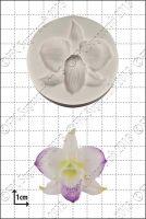 FPC Sugarcraft Dendrobium