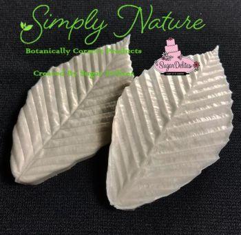 Authentic Veiners Beech Leaf Medium