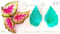 Galia Begonia Rex food-grade Silicon Mould
