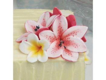 Blossom SugarArt Lily