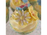 Blossom SugarArt Daisy