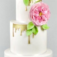 FMM Drip Inspired icing sugarcraft cutter