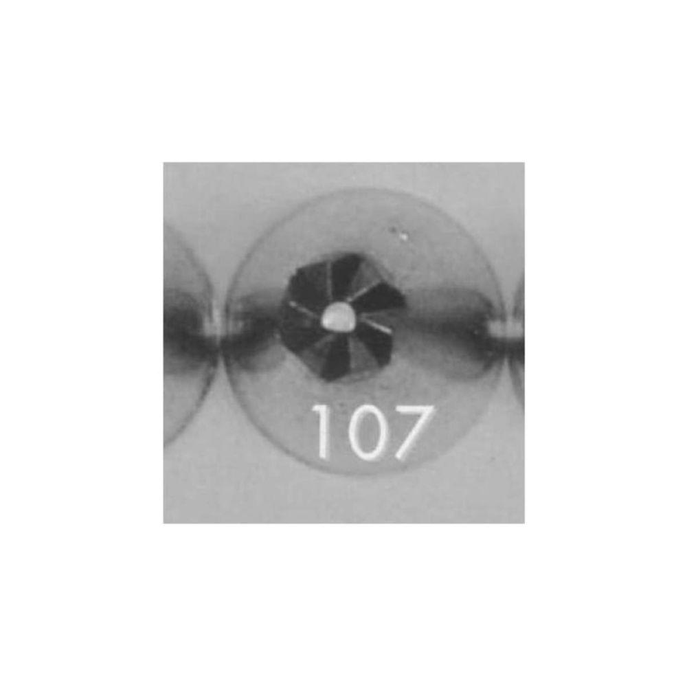 Ateco 107 piping nozzle icing tube tip (special 6 petal drop flower)