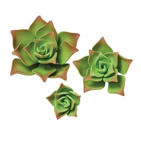 SUGARFLAIR: GUMPASTE-GREEN SUCCULENTS-38, 55 & 89mm