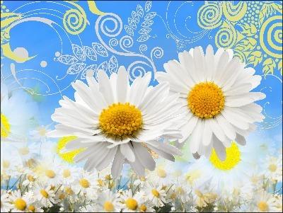 Edible ImageArt: DaisyBlue Topper