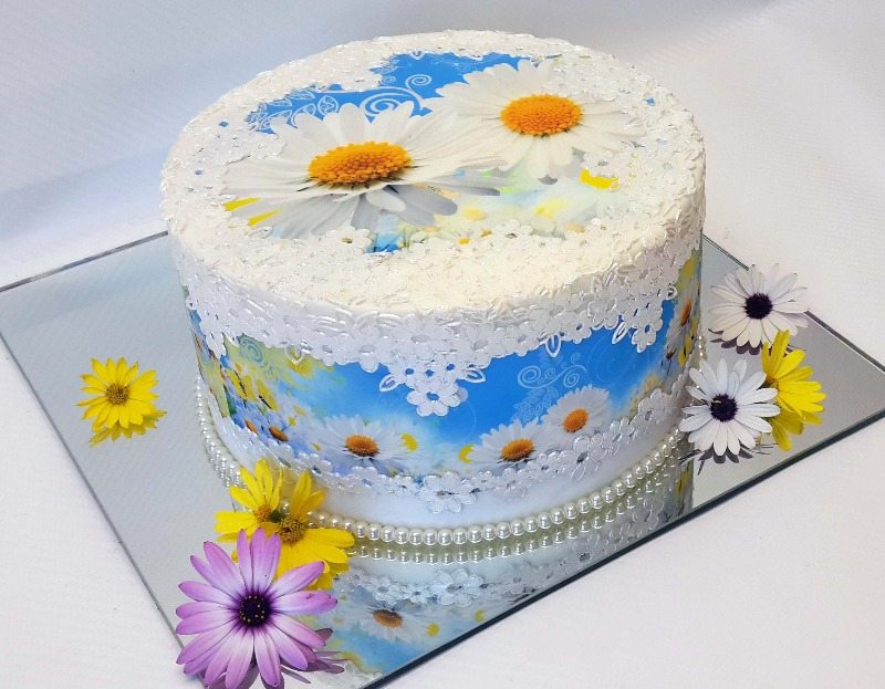 image art daisy blue cake