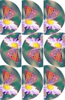 CupCake Edible ImageArt : Tenderness