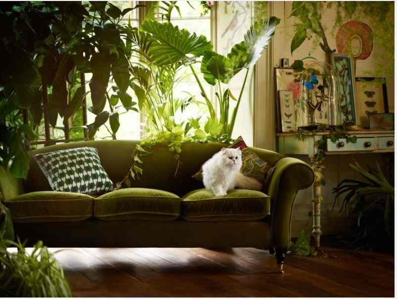 Autumn 2015 Room: Green Sofa - Screen-Shot-2015-09-08-at-16.20.47