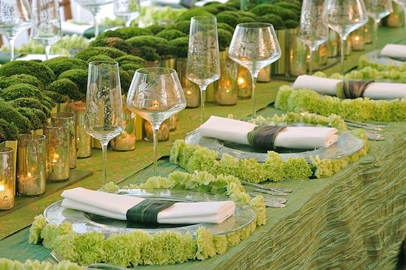 S16: 13 mossy-table
