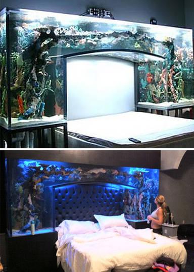 Nautic: Aquarium-Bed