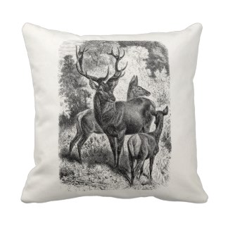Chalet Products 14: Stag Cushion vintages_1800s_rote_zierkissen-rbca0b72be0