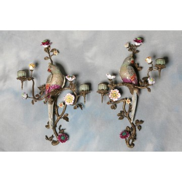 Easter 14: Parrot Wall Lights bp009use