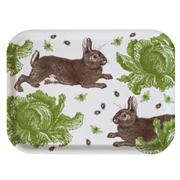 Easter 14 1: Hair Tray Image-3.aspx.html
