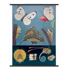 Spring 14 2: Wall Chart wpx9000-lr-ls