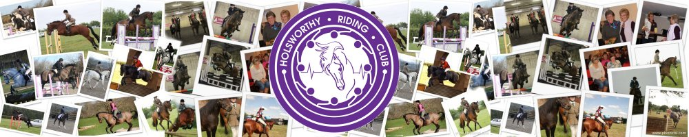 Holsworthy and District Riding Club, site logo.