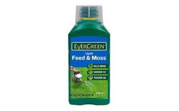 Evergreen Liquid Feed & Moss - 1ltr