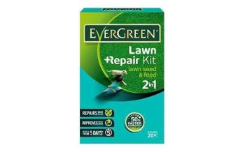 Evergreen Lawn Repair Kit - 20m2 #017759