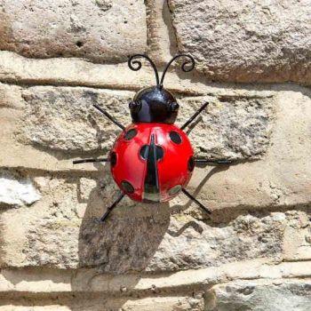 Hanger On - Ladybird x 1