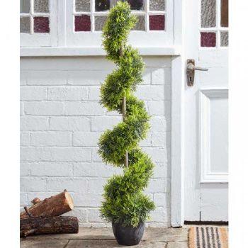 Topiary Twirl - Cypress - 120cm #55605005
