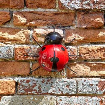 Hanger On - Large Ladybird x 1 #5032001