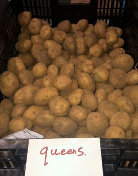 Queen's Seed Potatoes - 1kg