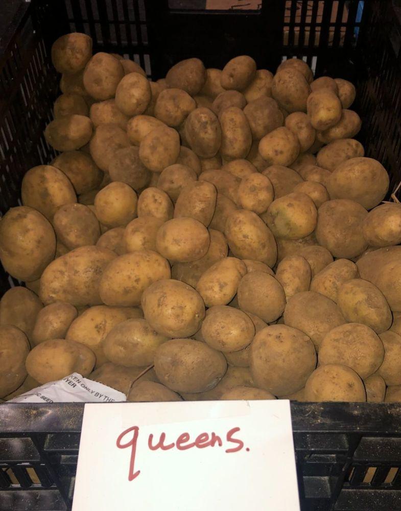 Queen's Seed Potatoes - 1kg