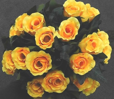 Silk dew drop rose bush 24 head yellow #63