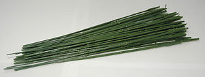 Pack of 48 carnation stems #76