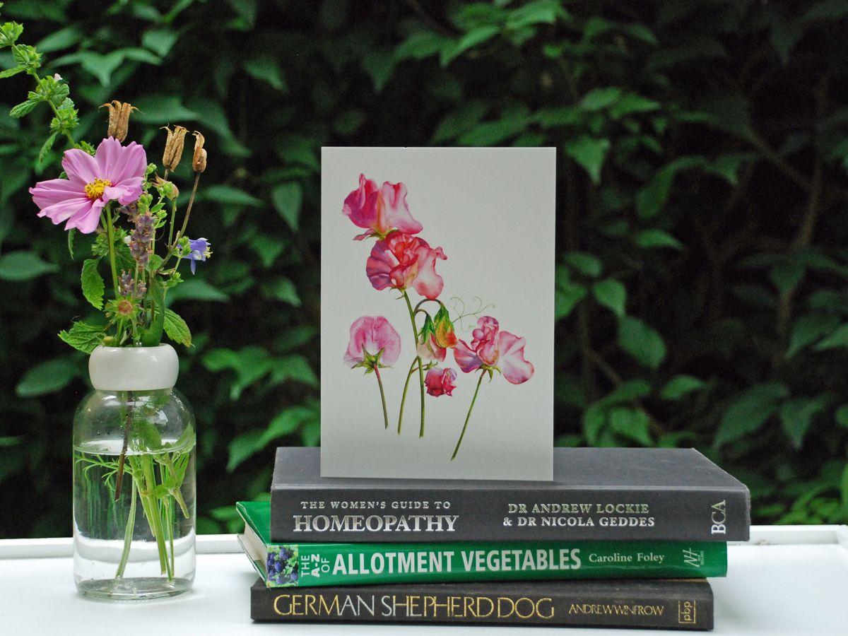 Nutmeg andSage botanical greetings cards