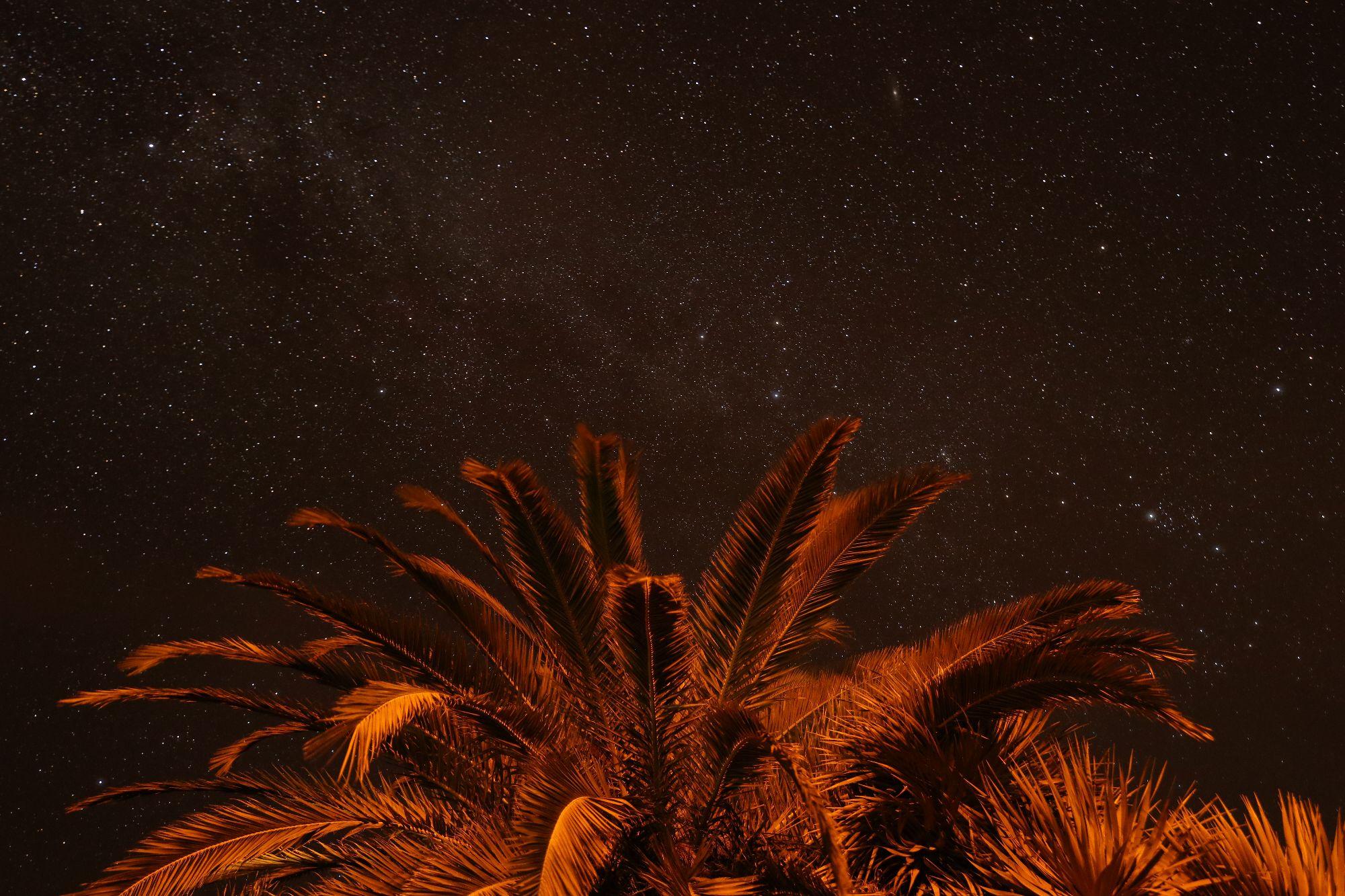 astronomy star gazing la palma