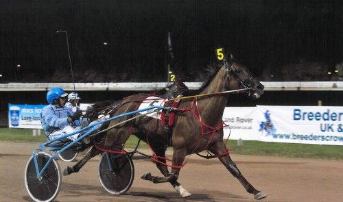 ZILCO HARNESS RACING