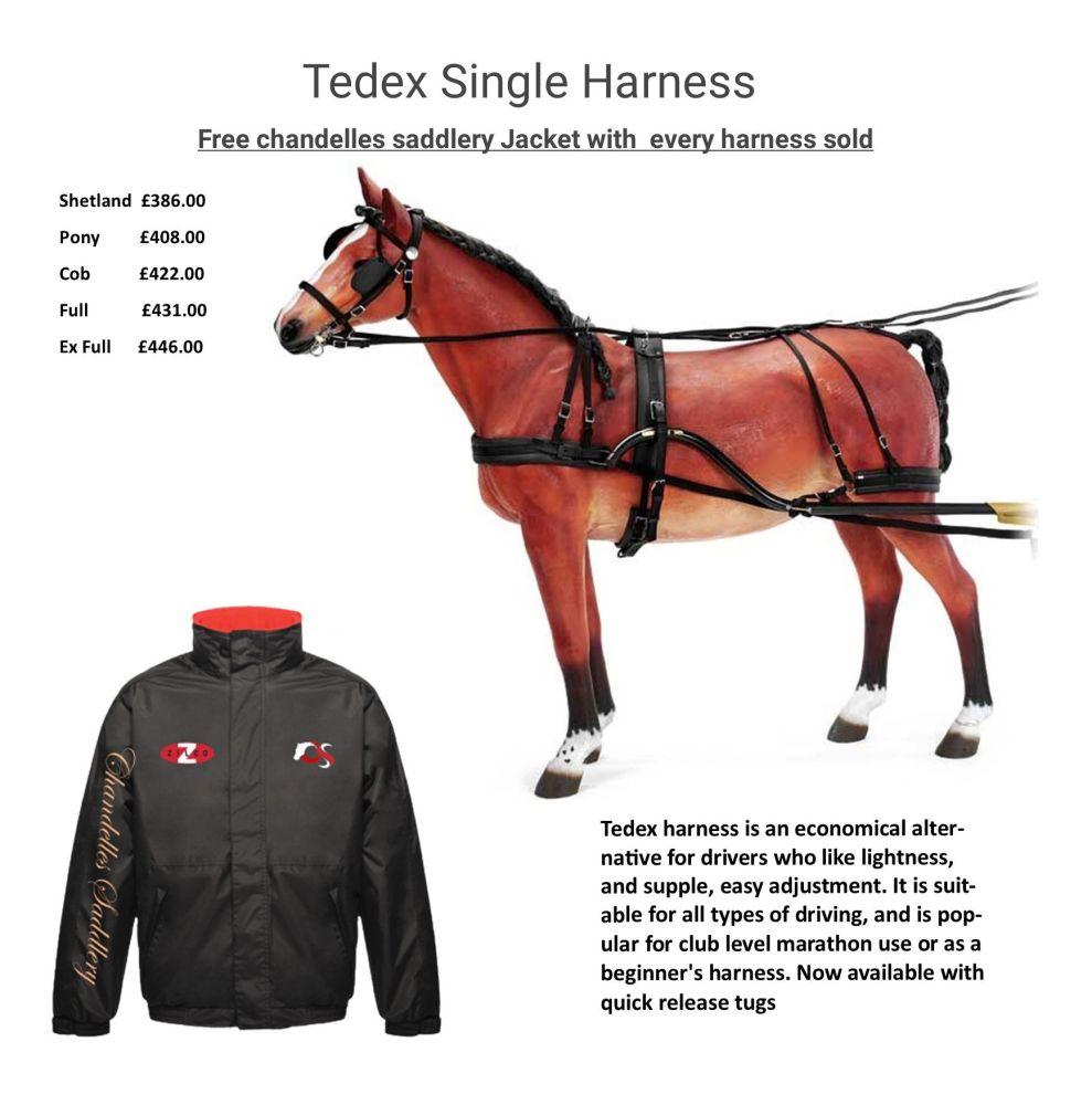 tedex and jacket offer blog