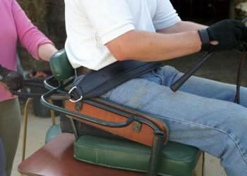 Harness Driver's Seatbelt