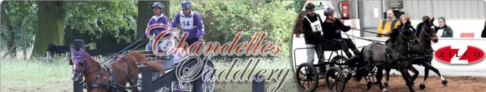 Chandelles Saddlery, site logo.