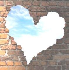 heart-wall 235